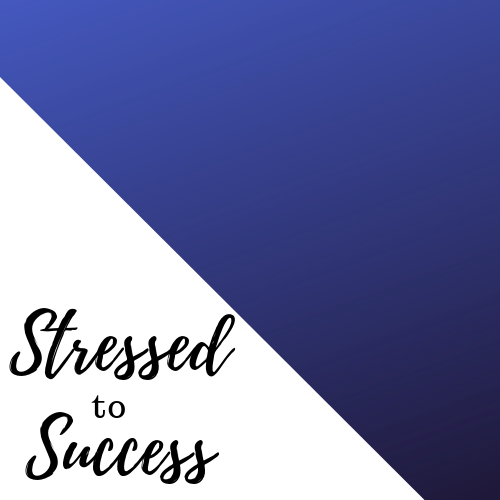 Stressed to Success Coaching Package